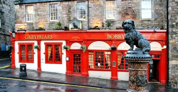 bobby-perro-que-estuvo-siempre-junto-a-la-tumba-de-su-amo1 - copia