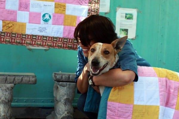 director entierra perro vivo 10