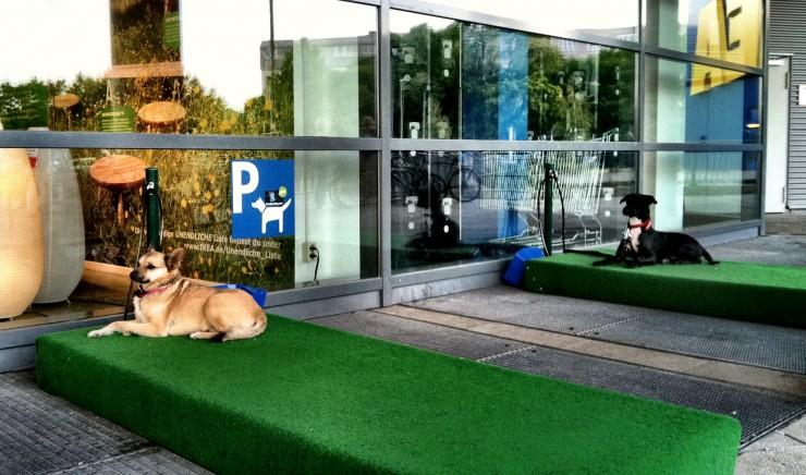 estacionamiento-para-mascotas2