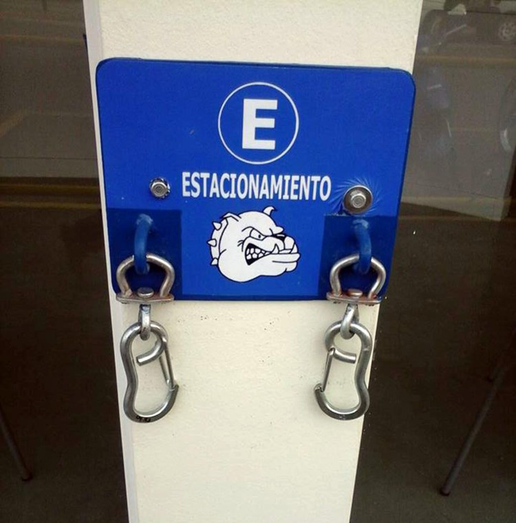 estacionamiento-para-mascotas4