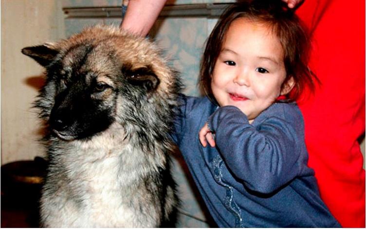 niña mowgli reunida con perro 1