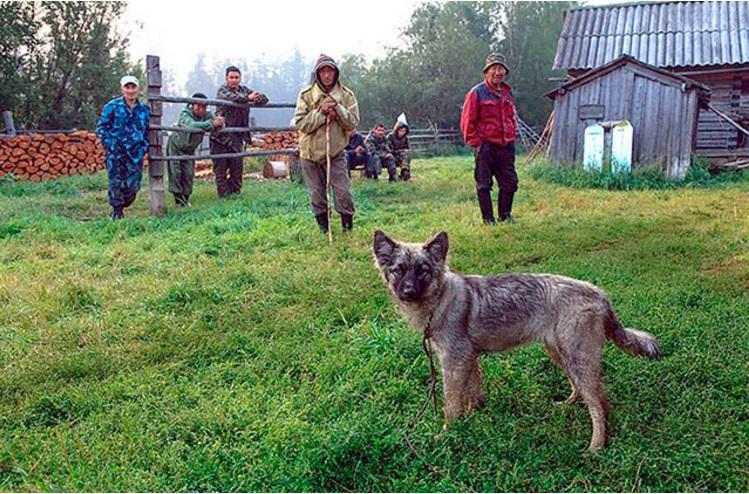 niña mowgli reunida con perro 7