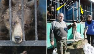 pareja-cuida-a-animales-de-zoo-abandonado10 - copia