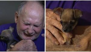 pareja-de-ancianos-recibe-perro-de-regalo1 - copia