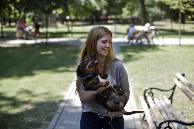 perro muere salvando niña 3