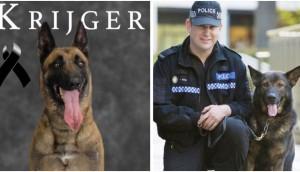 perro-policia-homenaje