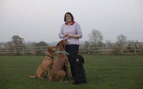 perros detectan cancer 10