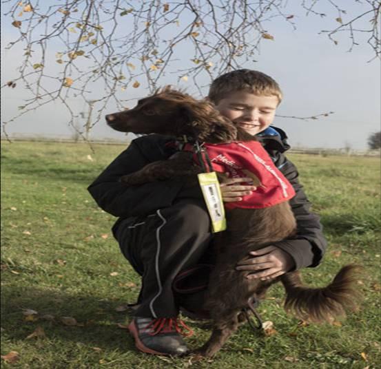 perros detectan cancer 1