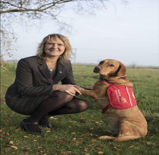 perros detectan cancer 2