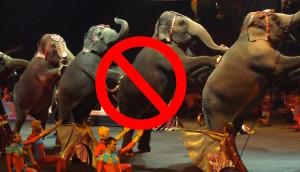 prohibido-circo