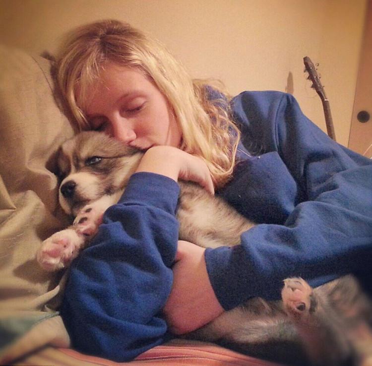 Husky rescatado 1