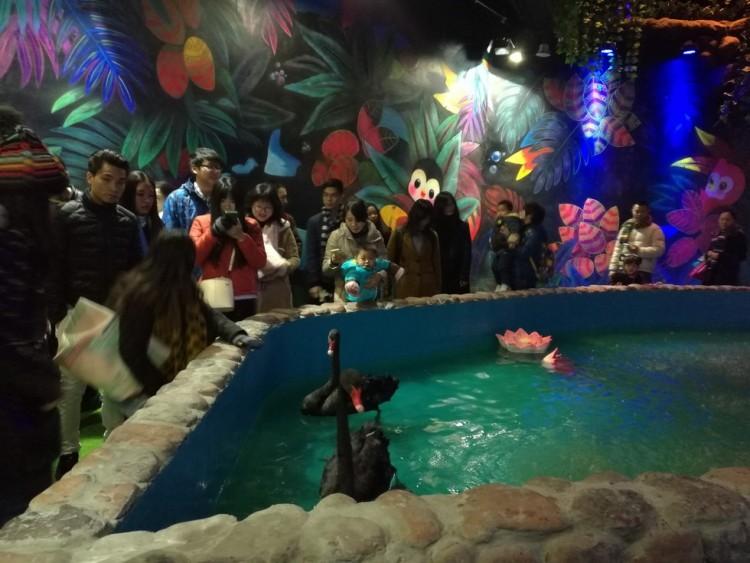 Zoologico de China 14