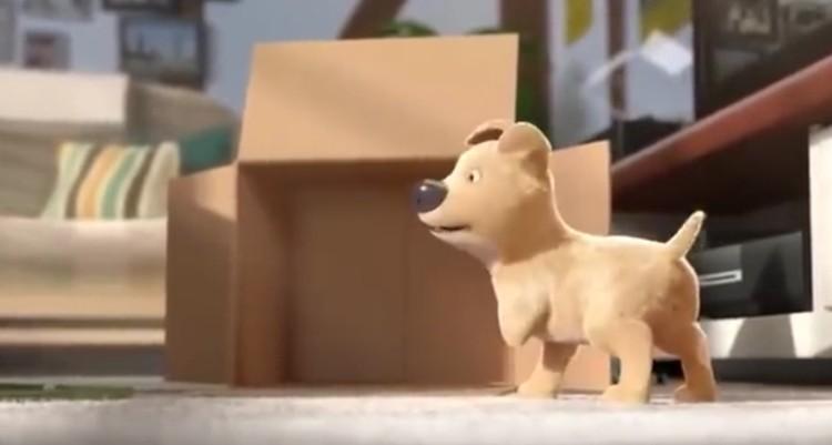 cortometraje-nino-recibe-perro7