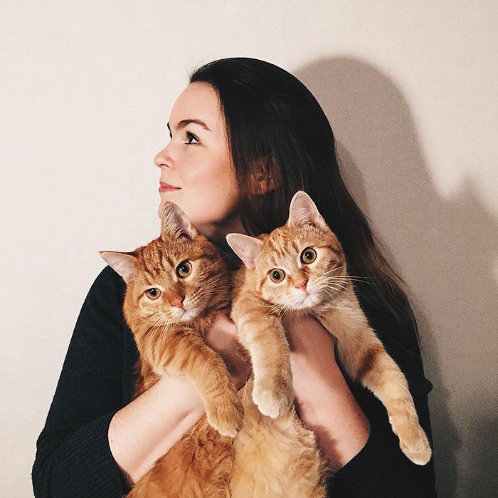 gatitos rojos 18
