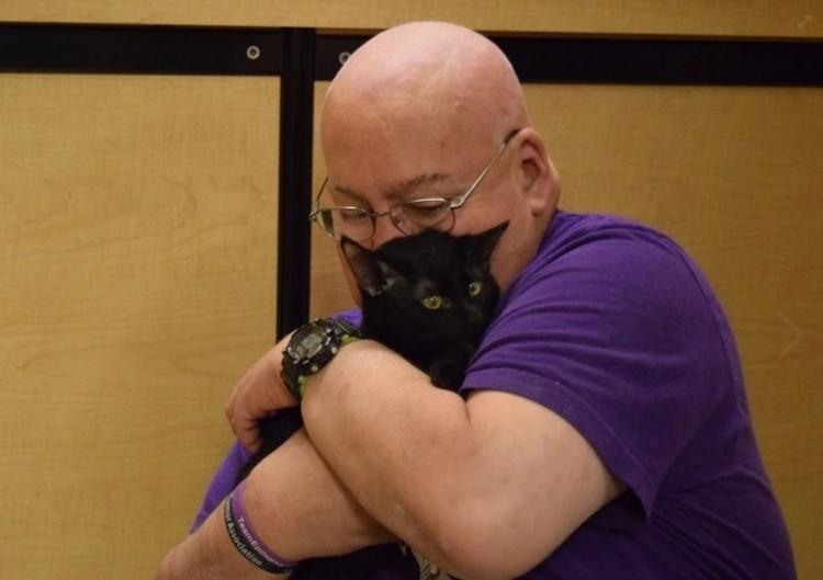 gato terapia 8