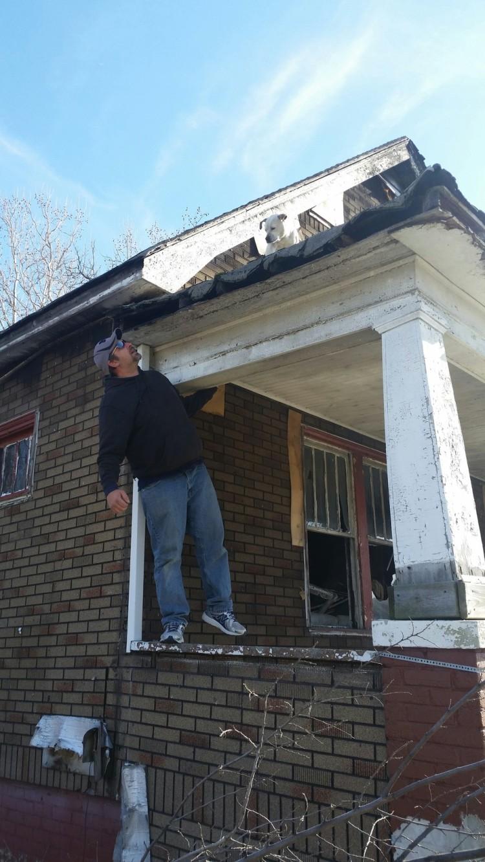 perro rescate del techo 3