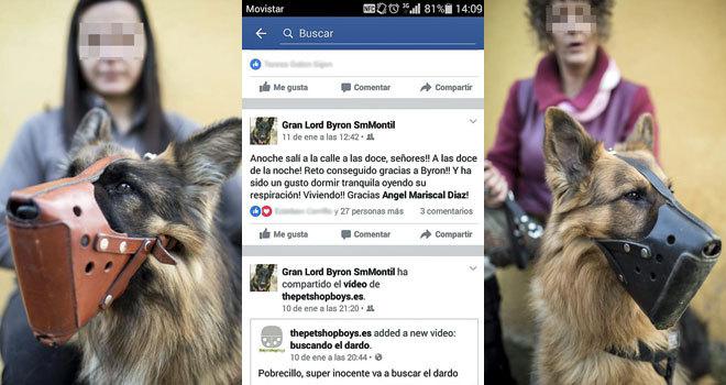 perros-defensores-de-mujeres-maltratadas1