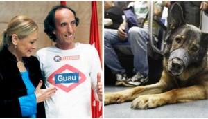 perros-podran-viajar-en-metro-madrid2 - copia