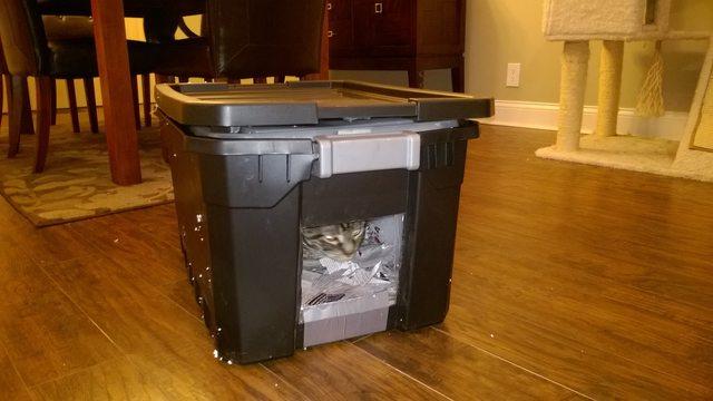 refugio para gato 2