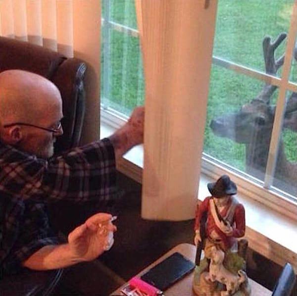 venado visita padre moribundo 1