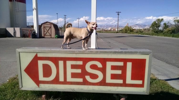 2historia-diesel-toth