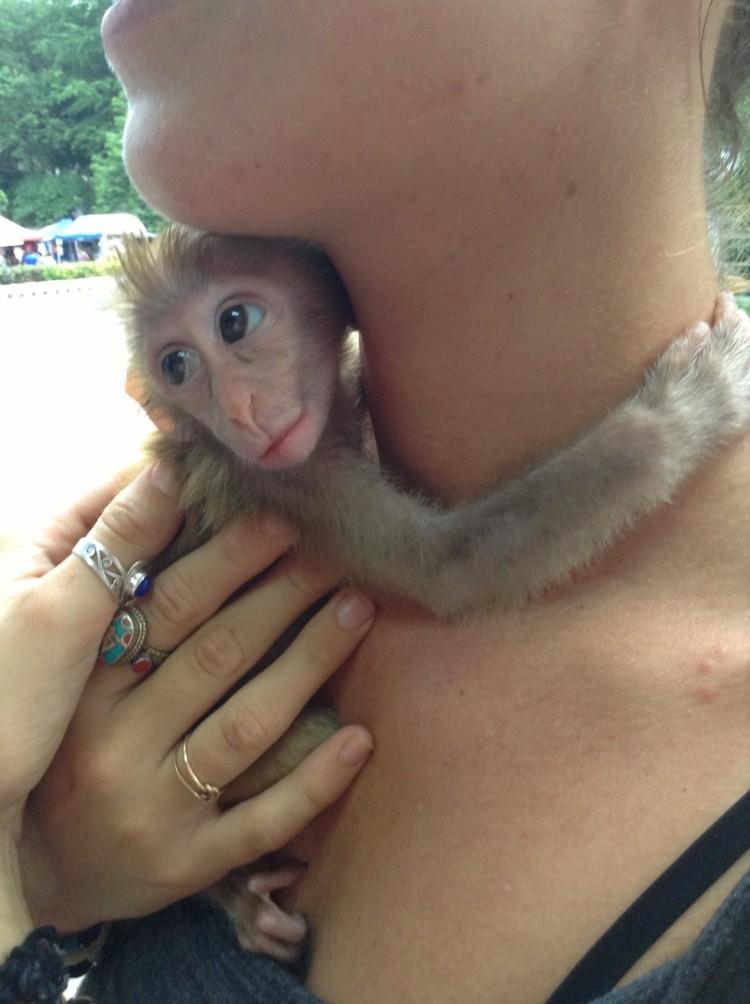 Mono y mujer 3