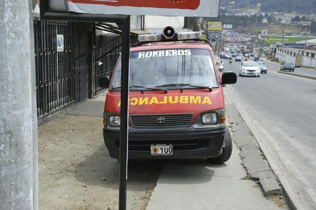 bombero-rescata-perro-atropellado5