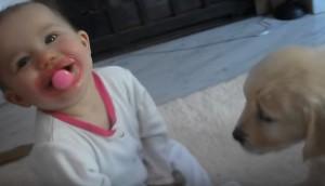 cachorro-se-encuentra-por-primera-vez-con-bebe