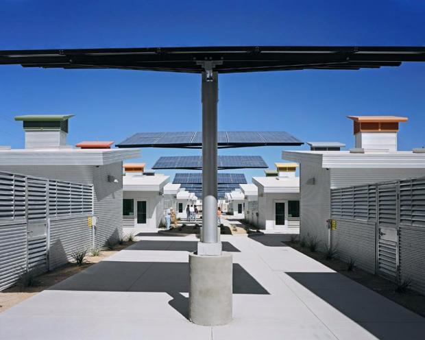 centro de rehab para animales 4