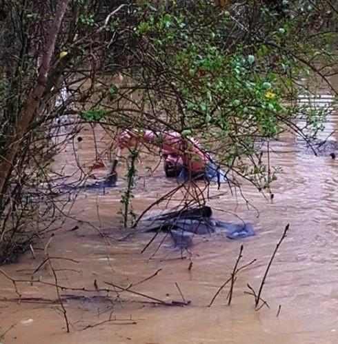 hombre bote animales inundacion 3 portada