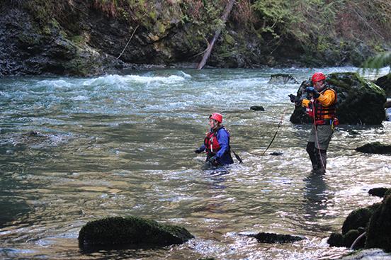 perro rescate del rio 2
