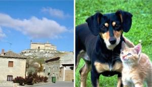 perros-y-gatos-declarados-vecinos-pueblo-espanol3 - copia