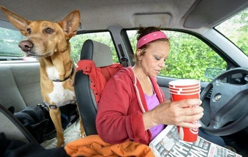 profesora-vive-en-coche-con-sus-perros6