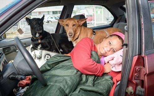 profesora-vive-en-coche-con-sus-perros7