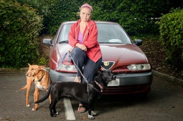 profesora-vive-en-coche-con-sus-perros8