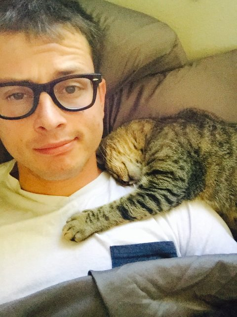 14 fotos de gatos mejor amigo del hombre 14