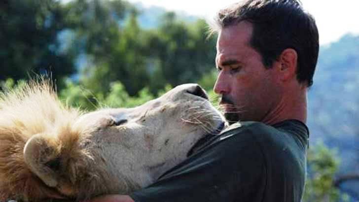 Leones abrazan a hombre 44