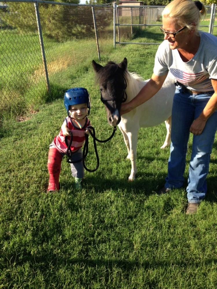 Mini caballo ayuda a niño 13