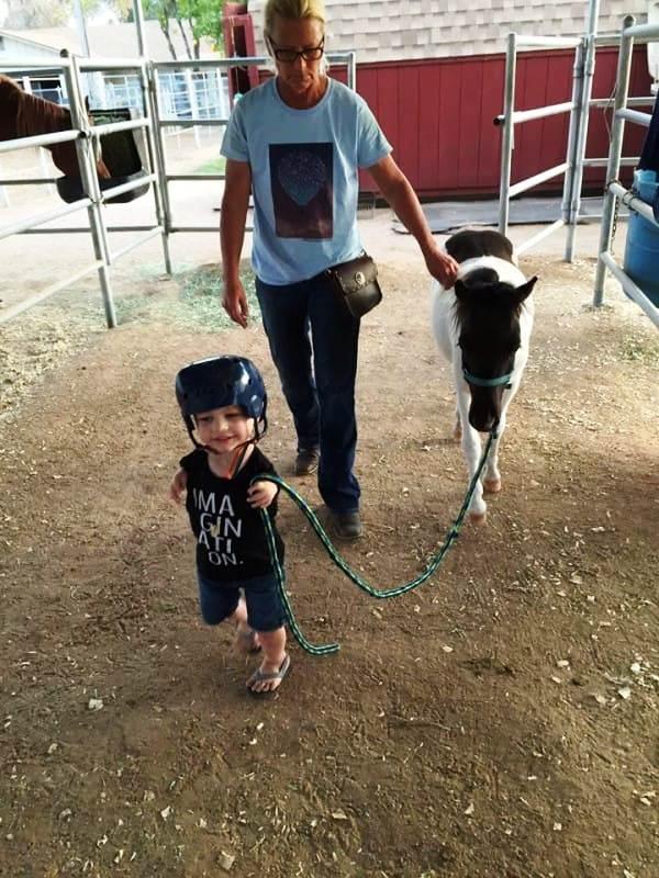 Mini caballo ayuda a niño 16