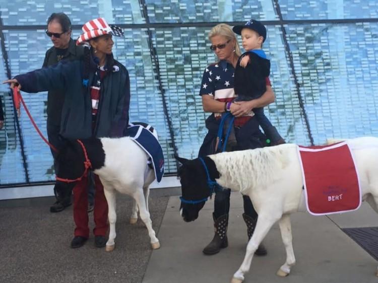 Mini caballo ayuda a niño 18