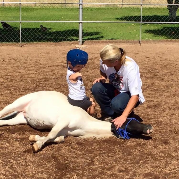 Mini caballo ayuda a niño 20