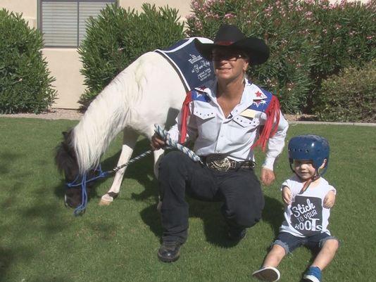 Mini caballo ayuda a niño 24