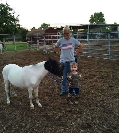 Mini caballo ayuda a niño 3