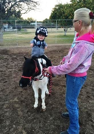 Mini caballo ayuda a niño 7