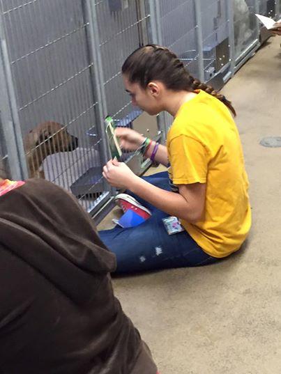 adolescentes leen a perros en refugio 2