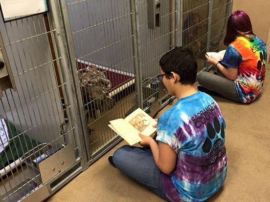 adolescentes leen a perros en refugio 4