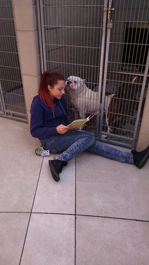 adolescentes leen a perros en refugio 5