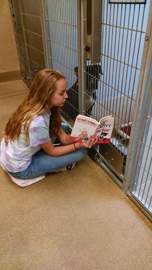 adolescentes leen a perros en refugio 6