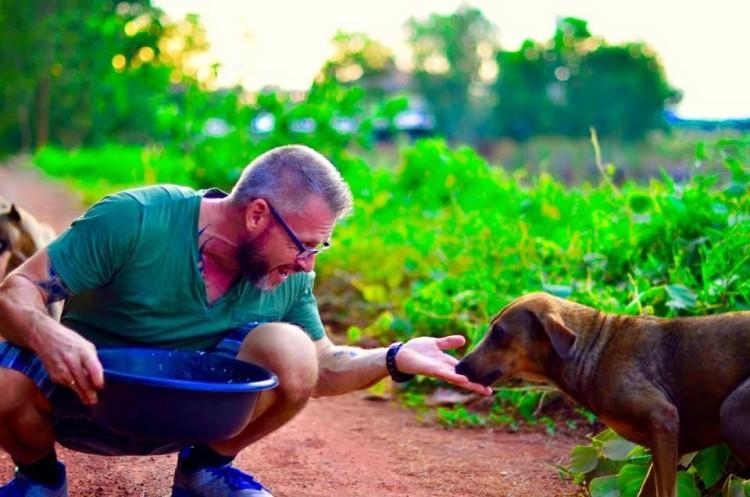 alimenta-perros-en-tailandia2