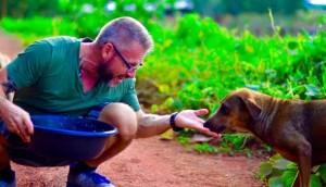 alimenta-perros-en-tailandia2 - copia